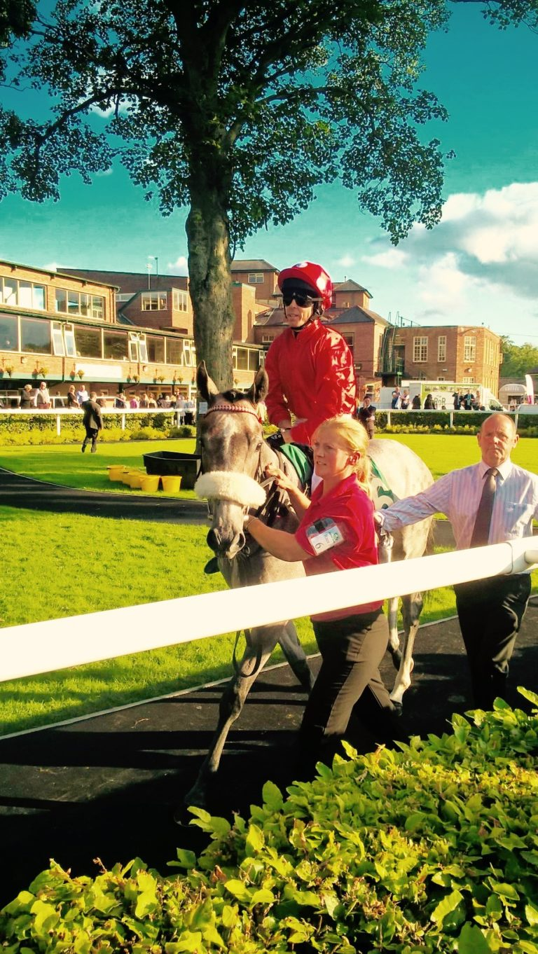 Racehorse Prospects