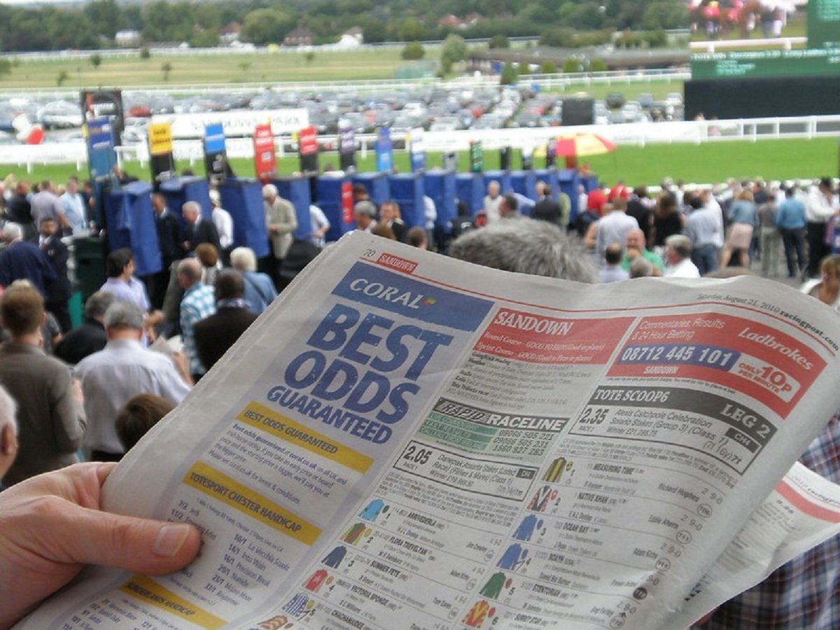 Profitable betting traits of a successful gambler