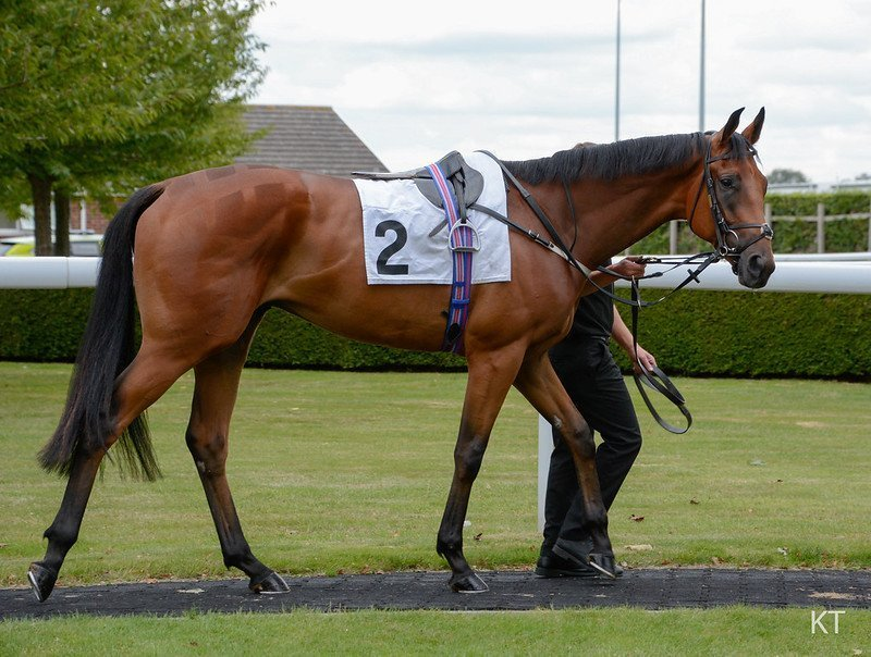 Race notes from week one of the Flat season